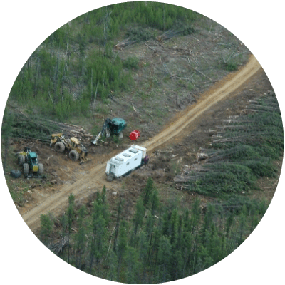 Waska expertise forestry